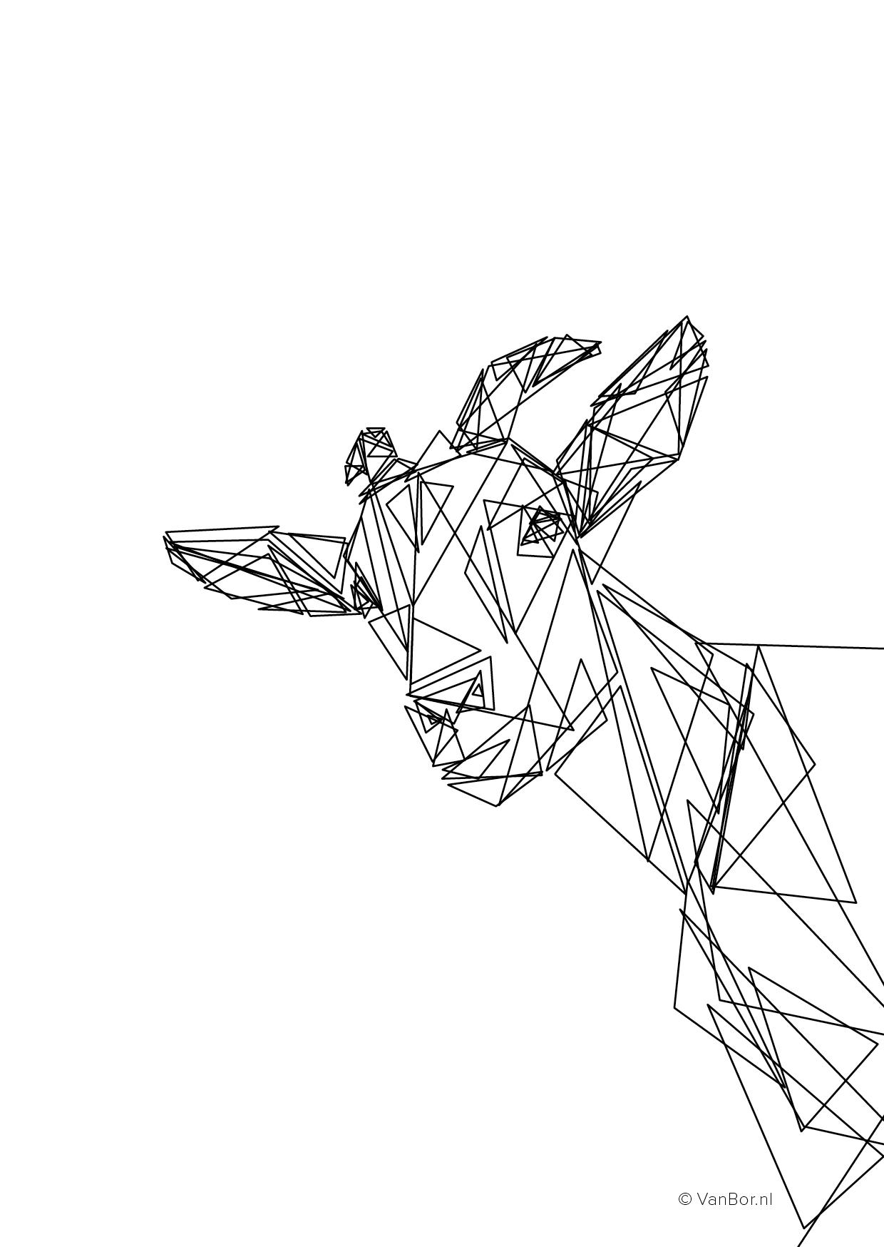 A6 ansichtkaart 105 x 148 mm Triangles Geit